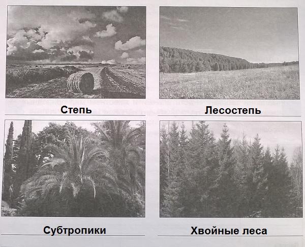 Определи природные зоны Краснодарского края
